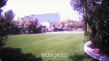 Easigrass Artificial Grass Installation at Jumeriah Creekside Hotel