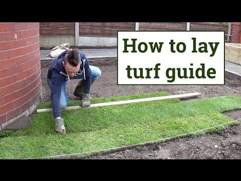 How To Lay Turf Buy Install And Maintain Artificial Grass