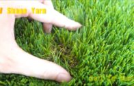 World Amazing Intelligent Technology Automatic Peat Artificial Turf Mega Machines Vacuum Harvester